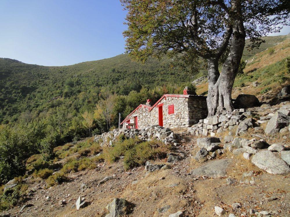 GR 20 - Bergeries d'Alzeta