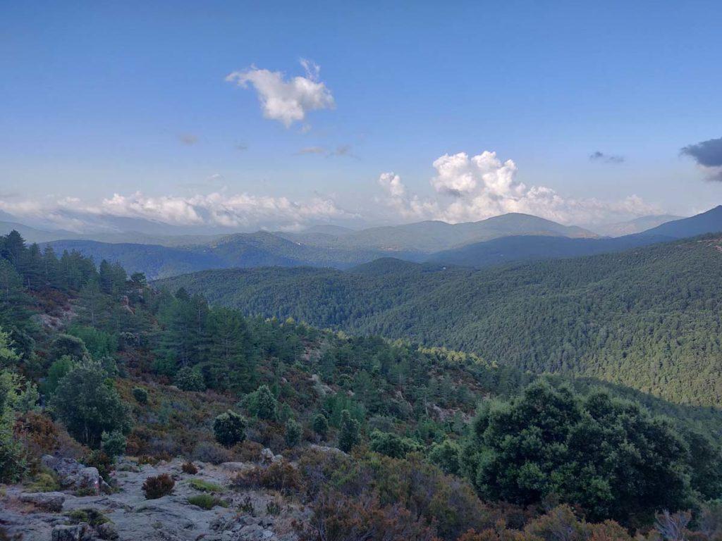 Biome - Paysage du mont