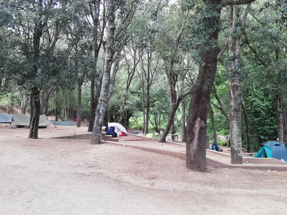 parc d etat